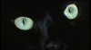 2172_The_Crimes_of_the_Black_Cat03.png