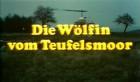 Wölfin vom Teufelsmoor, Die
