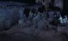 13942_Nacht-der-Reitenden-Leichen-Die-screenshot04.png