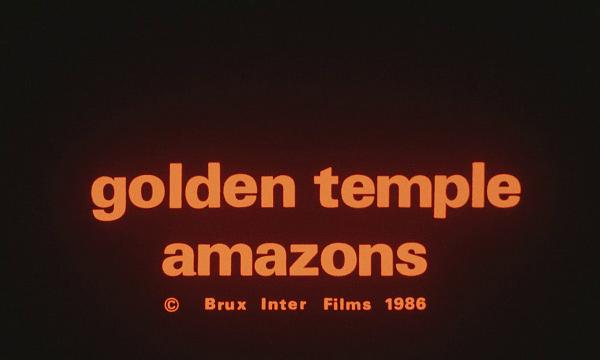 goldene Tempel der Amazonen, Der
