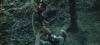 8751_frauen-die-man-toeterinnen-nannte-screenshot12.png
