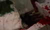 Zombie-III-screenshot05.png