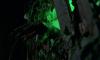 Zombie-III-screenshot12.png